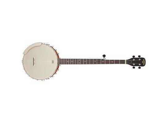Gretsch G9450 Banjo
