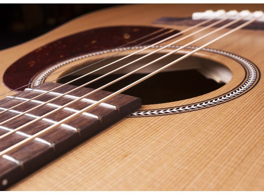 Seagull S6 Original Strings
